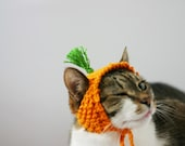 Carrot Top Cat Hat Knitting PATTERN Digital Download