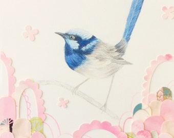 Beautiful Blue Wren Illustration