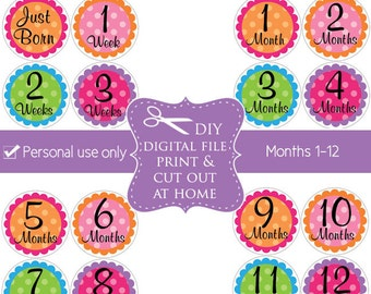 DIY baby month milestone stickers (No.93) girl download print printable monthly stickers baby age stickers Digital File