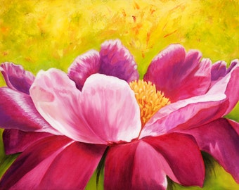 Original Oil Painting Peony Pink and White Petal Flower