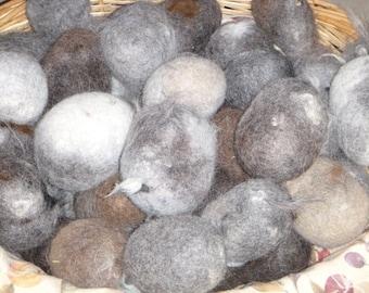 """Alpaca """"Rocks"""""""