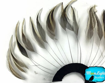 Feather Pad, 1 Piece - GOLDEN BADGER Half Beaded Pinwheel Stripped Rooster Hackle Feather Pads : 3815