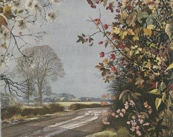 Bryony, Elderberry, Rose Hip, Maple, Spindle-Tree, Bittersweet, Vintage Flower Print 11,1955, Botanical Art, Country Cottage Decor