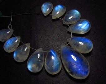 AAAA - high grade quality - Amazing Flashy Blue fire Rainbow Moonstone Smooth pear briolett Huge size - 10x13  - 15.5x28 mm 11pcs