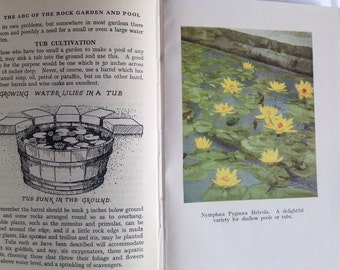 The ABC of the Rock Garden and Pool W.E. Shewell-Cooper