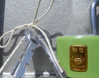Green Padlock / Lock With Key
