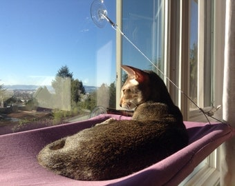 Solids - Curious Cats Window Perch