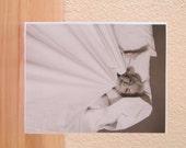 Comfy Marilyn Card