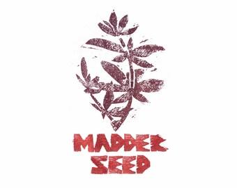 Madder Seeds : Dye Plant 20 Seeds