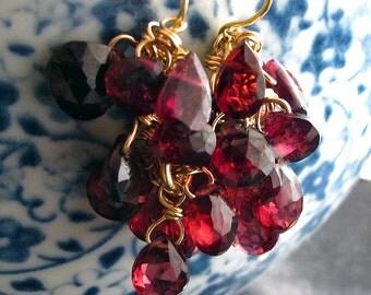 14k Gold Garnet Drop Earrings, 14k Solid Gold Garnet Earrings, Garnet Cluster Earrings