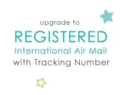 Registered International Air Mail with Tracking