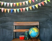 Festive Colorful Mini Flag Garland / Fabric Bunting Banner / Playroom Decor / Birthday Party Decoration / Baby Shower / Photo Prop
