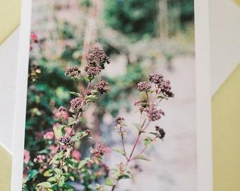 Fine Art Film Photography Greetings Card flowers