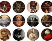 Cat Dog Magnets Pins Costumed Animals Gift Sets Party Favors Fridge Magnets Cabachons