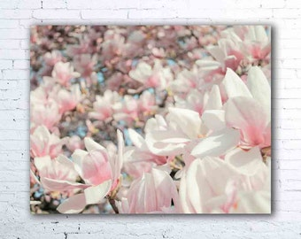 magnolia print - pastel pink wall art - flower photography - magnolia tree print