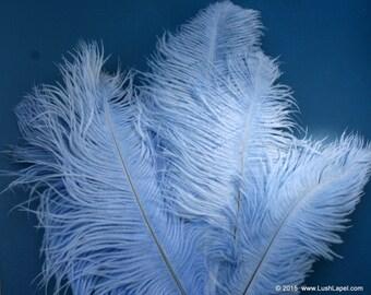 SALE-- Sky Blue Ostrich Plume 5 Pack- Soft, Lush, High Quality