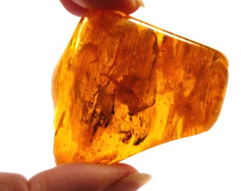 Baltic Amber Nugget with Fossil Insects Polished Honey Untreated Natural 31.6 gram