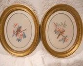 Set of Two Birds on a Branch in Gold Oval Frames  - Wall Accessory - Wall Art - Art Deco - Ready to Ship