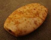 Chunky  New  Mexico  Petrified  Palm  Wood  Stone  Bead