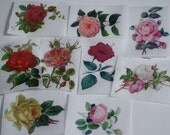 12 vintage flower edible wafer paper images for cookies and cookie decorating.