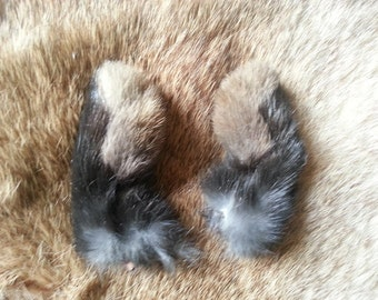 Real Dried Black Rabbit Feet - Front Paws