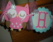Owl Happy Birthday Aqua bright pink teal Banner Matching Tissue Pom Poms Available