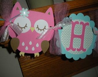 Owl Birthday Banner, Aqua Hot pink teal Owl Banner, birthday owl banner, Matching Tissue Pom Poms Available