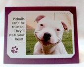 You can't trust pitbulls.  They steal you heart Greeting Card
