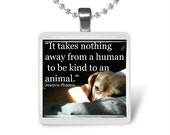 It takes nothing away from a human to be kind to an animal Glass Tile Pendant