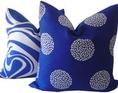 CUSTOM LISTING for TERRI - Blue Inmotion Sunbrella Pillow