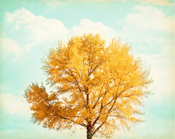 Nature Photography - gold yellow blue mint teal orange fall tree autumn leaves orange colorful wall art golden foliage sky - 8x10 Photograph