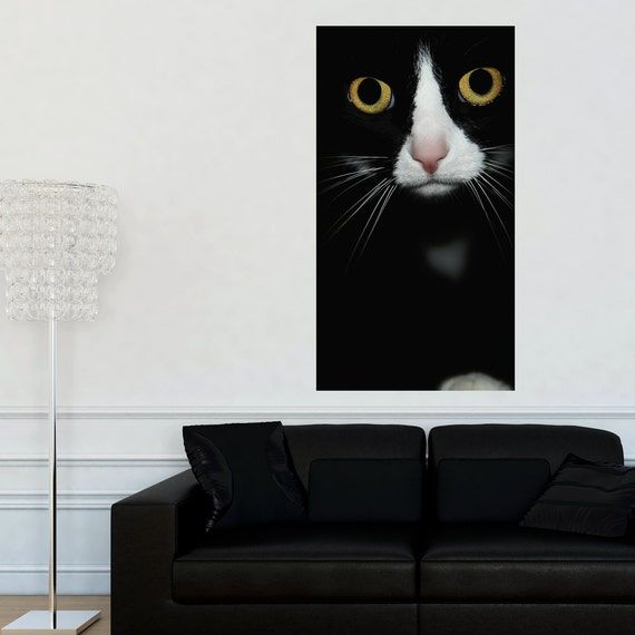Cat Photography Wall Sticker Decal Are You by MyWallStickers