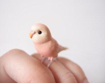 Sweet pink parrot ring