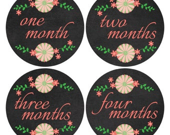 Chalkboard Monthly Age Stickers, Chalkboard Coral Baby Stickers, First Year Stickers, New Mom Gift, Coral Baby Nursery Decor (310)