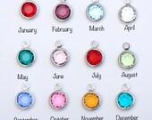 ONE Swarovski Crystal Charm, Birthstone Charm,  Personalized Jewelry