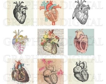 HEARTS Anatomy Anatomical drawings Anatomical hearts Digital Graphics Digital Collage Sheet Instant Download 1 inch squares