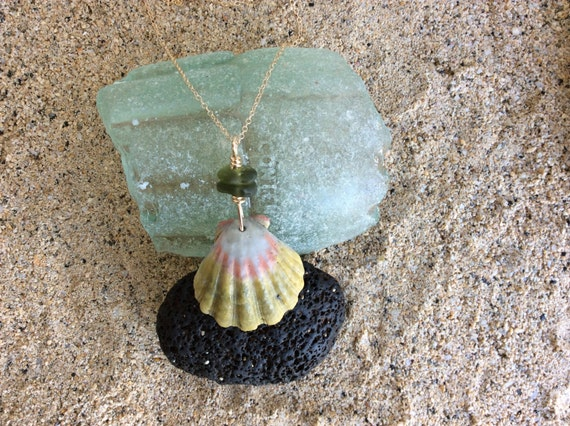 Hawaiian Sunrise Shell, Sea Glass, 14k Gold Filled Fine Cable Chain Necklace