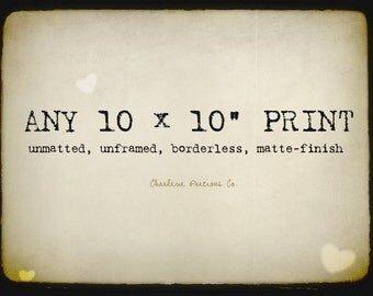 """Customize the size of your print and enlarge it to a 10 x 10""""!"""