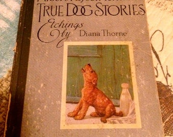 Vintage book True Dog Stories illustrated throughout and adorable! Boxer, Scotty, Terrier, & More!