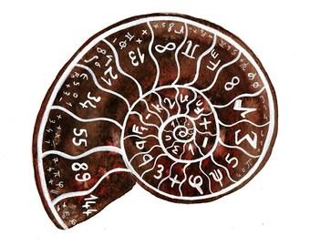 Science art Fibonacci numbers Original watercolor Geometry Mathematics Ammonite painting