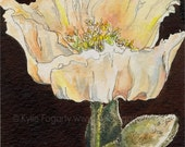 "Poppy Flower, Pen and Hand Painted Ink Painting, Original Art, Mixed Media Artwork - ""Brown Hued Poppy"", Kylie Fogarty Australian Artist"
