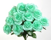 "New Silk Mint Rose Bush, 12 Mint Roses 3.5"" in diameter."
