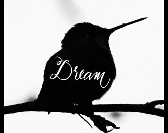 Hummingbird Silhouette - Bird Art Print - Dream Quote - Inspirational Quote - Bird Photography - Hummingbird - Kids Room Decor - Nursery Art