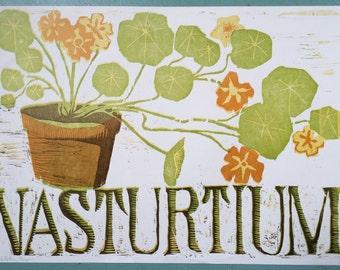 Nasturtium Flower Woodblock Print
