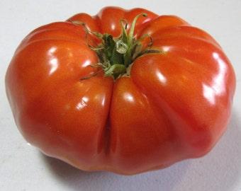 Tomato - Pink Brandywine - Heirloom - NO GMO - 25 Seeds