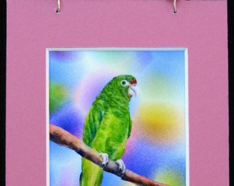 Costa Rican Parrot watercolor mini print magnet with hanger