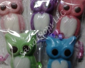 24 Baby Shower First Birthday Owl Party Favors