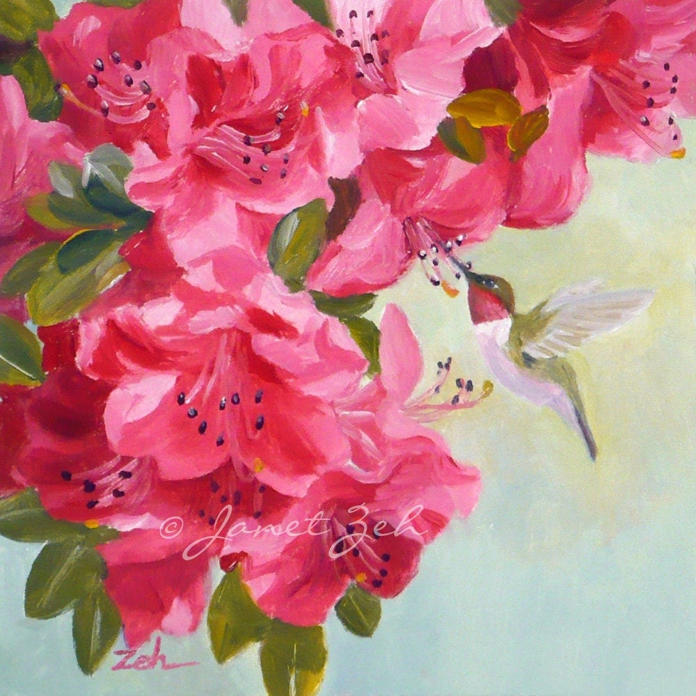 Hummingbird art print pink azalea flowers garden decor bird