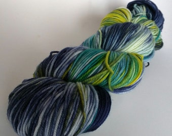 Marlin on SW Merino/Nylon Hand dyed  Max Sport weight  yarn