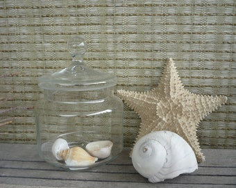 Vintage Apothecary Jar, Glass Display Jar, Cottage Decor, Shabby Chic